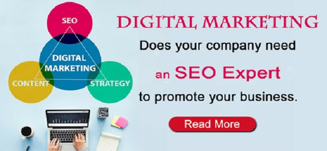 SEO Experts are offering the best SEO Services