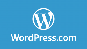 seo-experts-pk-wordpress2